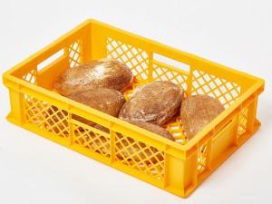 fatra vstřikování - přepravka pečivo